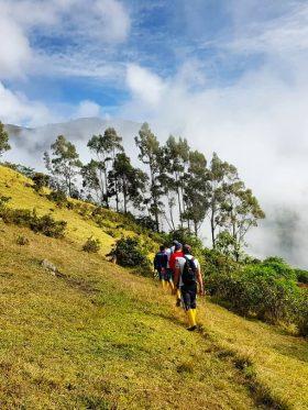 Disfruta de las actividades naturales en el Entorno Santagua